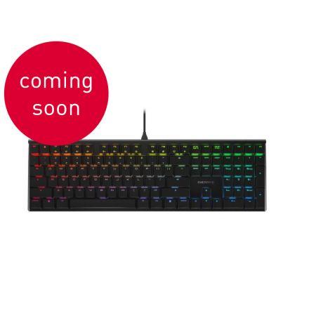 CHERRY MX 10.0 keyboard